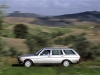 1975 Mercedes-Benz 123 series thumbnail photo 41118