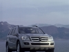 2006 Mercedes-Benz GL-Class thumbnail photo 40365