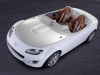 2009 Mazda MX-5 Superlight Concept thumbnail photo 43841