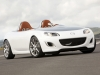 2009 Mazda MX-5 Superlight Concept thumbnail photo 43848