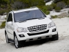 2009 Mercedes-Benz M-Class thumbnail photo 37561