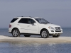 2009 Mercedes-Benz M-Class thumbnail photo 37570