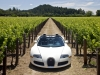 2010 Bugatti Veyron 16.4 Grand Sport Napa Valley thumbnail photo 29612