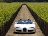 2010 Bugatti Veyron 16.4 Grand Sport Napa Valley thumbnail photo 29613