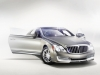 2010 Maybach Xenatec Coupe thumbnail photo 47159