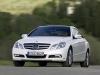 2010 Mercedes-Benz E-Class Coupe thumbnail photo 37197