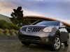 2010 Nissan Rogue thumbnail photo 29275