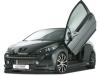 2010 RDX Racedesign Peugeot 207