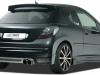 2010 RDX Racedesign Peugeot 207 thumbnail photo 24988