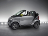 Smart ForTwo Edition Greystyle 2010