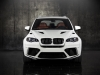 2011 Mansory BMW X5 M thumbnail photo 19766