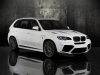 2011 Mansory BMW X5 M thumbnail photo 19768
