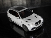 2011 Mansory BMW X5 M thumbnail photo 19771