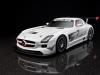 2011 Mercedes-Benz SLS AMG GT3 thumbnail photo 36191