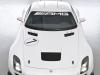 2011 Mercedes-Benz SLS AMG GT3 thumbnail photo 36197