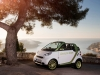 2011 Smart ForTwo Electric Drive thumbnail photo 18952