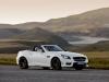 2012 Mercedes-Benz SLK55 AMG thumbnail photo 35075