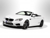 2013 AC Schnitzer BMW M6 Gran Coupe thumbnail photo 35449
