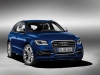2013 Audi SQ5 TDI thumbnail photo 6775