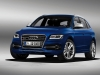 2013 Audi SQ5 TDI thumbnail photo 6782