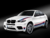 2013 BMW X6 M Design Edition
