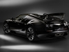2013 Bugatti Veyron Jean thumbnail photo 15110