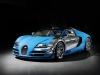 2013 Bugatti Veyron Meo Costantini thumbnail photo 28036