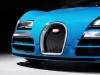 2013 Bugatti Veyron Meo Costantini thumbnail photo 28040
