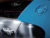 2013 Bugatti Veyron Meo Costantini thumbnail photo 28044