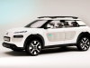 2013 Citroen Cactus Concept thumbnail photo 14806
