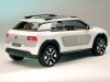 2013 Citroen Cactus Concept thumbnail photo 14807