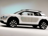 2013 Citroen Cactus Concept thumbnail photo 14809