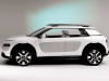2013 Citroen Cactus Concept thumbnail photo 14810