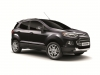 2013 Ford EcoSport Limited Edition thumbnail photo 14553