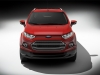 2013 Ford Ecosport thumbnail photo 2504