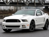 2013 Ford Mustang thumbnail photo 3503