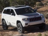 2013 Jeep Grand Cherokee Trailhawk thumbnail photo 58599