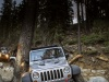 2013 Jeep Wrangler Rubicon 10th Anniversary thumbnail photo 58583