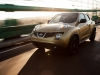 2013 Nissan Juke thumbnail photo 27754