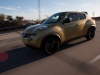 2013 Nissan Juke thumbnail photo 27759