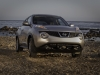 2013 Nissan Juke thumbnail photo 27765