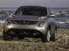 2013 Nissan Juke thumbnail photo 27766