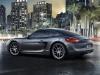 2013 Porsche Cayman thumbnail photo 7576