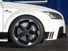 2013 PP-Performance Audi TT RS Black & White thumbnail photo 25872