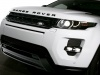 2013 Range Rover Evoque Black Design thumbnail photo 53394