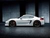2013 Techart Porsche Cayman thumbnail photo 14064