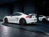 Techart Porsche Cayman 2013