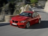 2014 BMW 2 Series Coupe thumbnail photo 25210