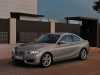 2014 BMW 2 Series Coupe thumbnail photo 25219