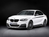 2014 BMW M235i Coupe thumbnail photo 33300
